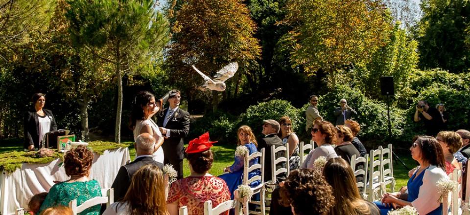 fotos de boda_4