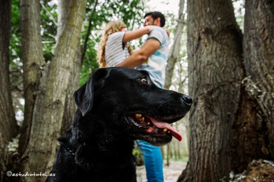 Yulia y Juan, las fotos de la preboda